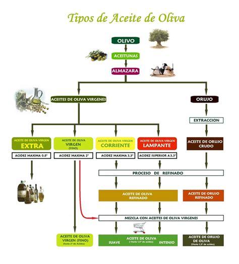 Tipos de aceite | Arbara