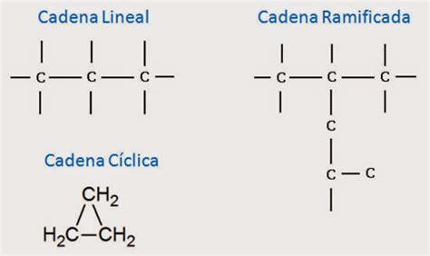 tipos de carbono y cadenas :: Ciencias: química y biología