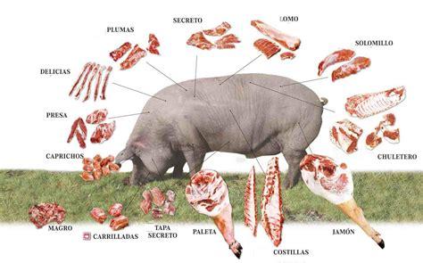Tipos De Carnes Rojas | www.pixshark.com - Images ...