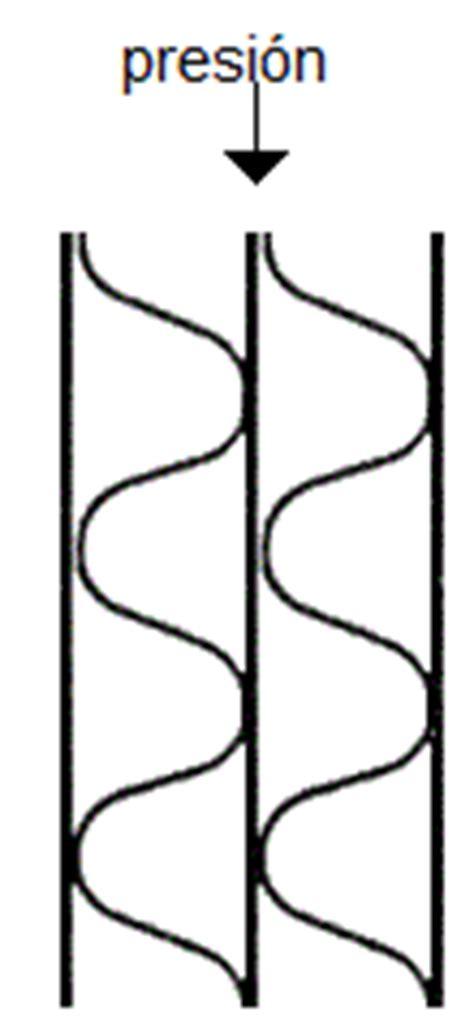 Tipos de cartón corrugado   Arkiplus.com