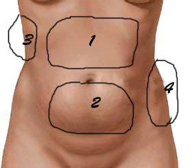 Tipos de gordura abdominal