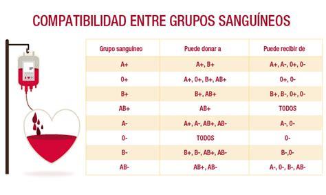 Tipos de grupos sanguíneos: ¿y tú que tipo de sangre eres?