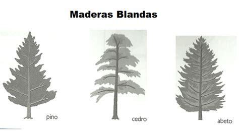 Tipos de Madera ~ Madereria el Cedro tultitlan