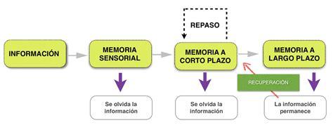 Tipos de memoria | Filosofía y Psicología | Pinterest ...
