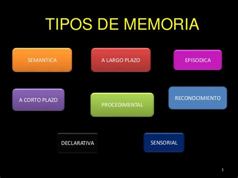 Tipos de memoria - neuropsicologia