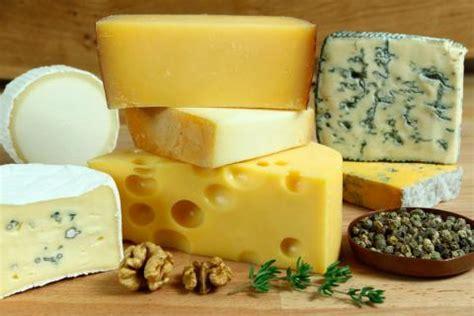 Tipos de queso y usos en la cocina   Dieta y Nutrición