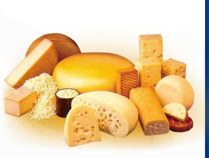 Tipos y propiedades del queso | Askora