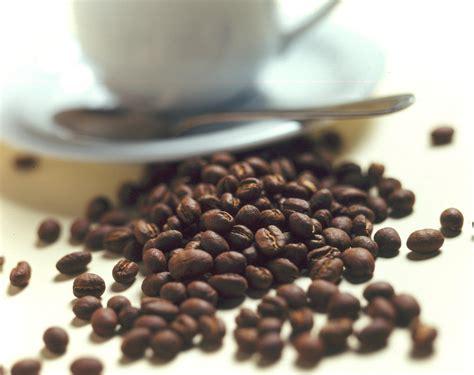 Tomásnomás: El café quien lo descubrió?