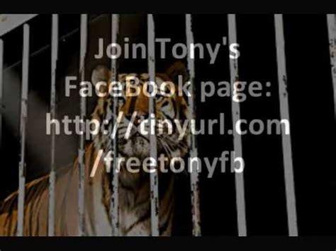 Tony's Tale: Tony The Truck Stop Tiger - YouTube