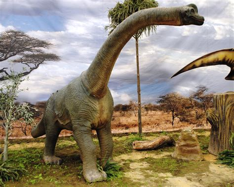 Top 10 Herbivorous Dinosaurs : 4 - They Do Move In Herds ...