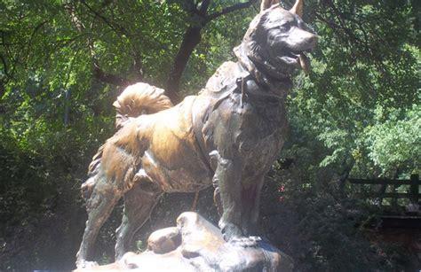 Top 10: ¡Los perros más famosos de la historia! - CABROWORLD