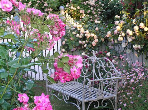 Top 15 Plantas con Flores   1001 Consejos