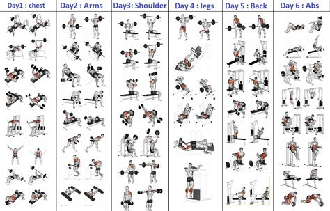 Top 5 Day A Week Strength Training Plan - Gym Workout Chart