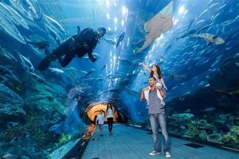 TOURIST ATTRACTIONS DUBAI AND SIGHTSEEING
