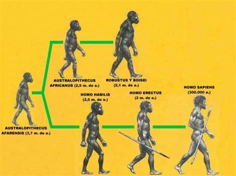 trabajo informatica: prehistoria la evolucion del ser humano