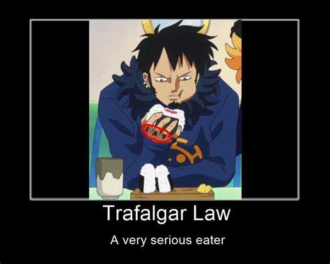 Trafalgar Law memes | One Piece Amino