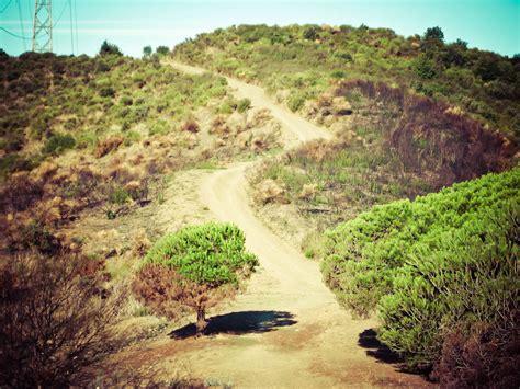 Trailrunning tour in Tibidabo, Collserola, Barcelona with ...