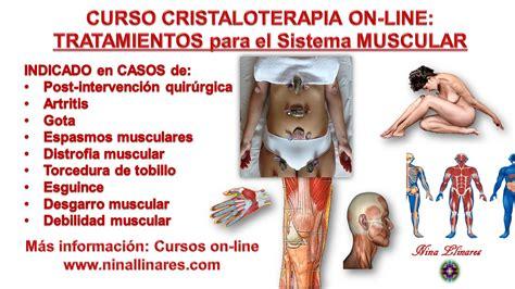 Tratamiento para Sistema Muscular   Nina Llinares