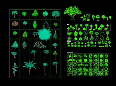 Trees, Shrubs and House Plants 2D DWG Block for AutoCAD ...