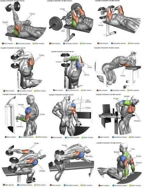 Tricep exercises | Fitness | Pinterest | Workout, Fitness ...