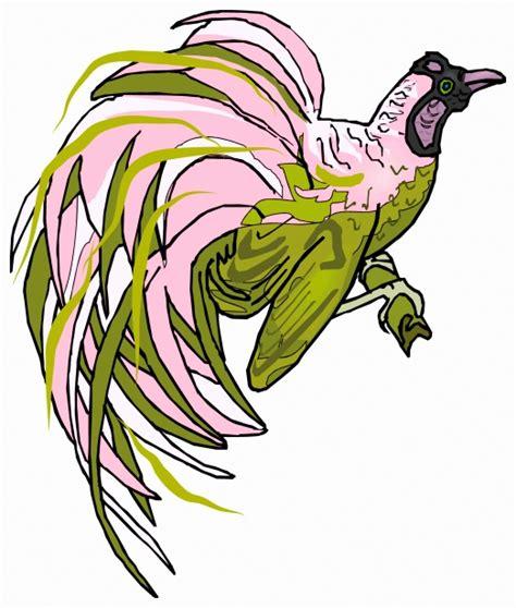 tropicales  pájaros Stock de Foto gratis   Public Domain ...