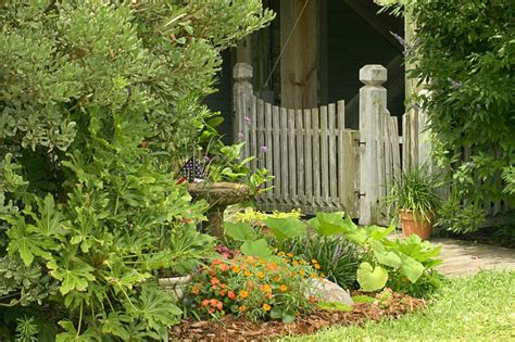 Trucos para agrandar un jardín pequeño | Plantas