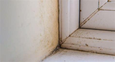 Trucos para eliminar la humedad de la pared   Emedemujer ...