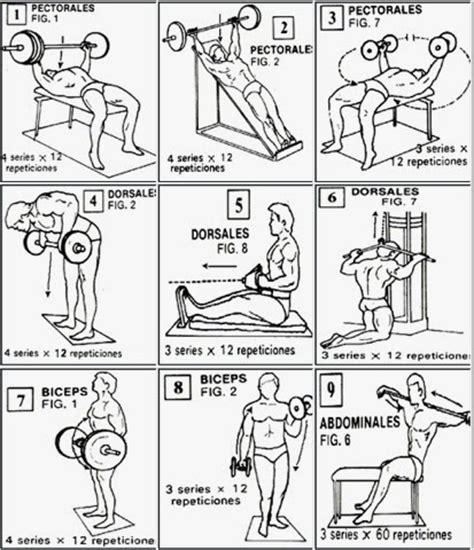 Tu cuerpo en forma: Rutinas de ejercicios para principiantes