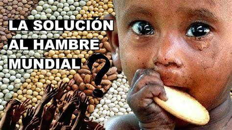 TU PANZA LLENA, SU PLATO VACIO | la solución al hambre ...