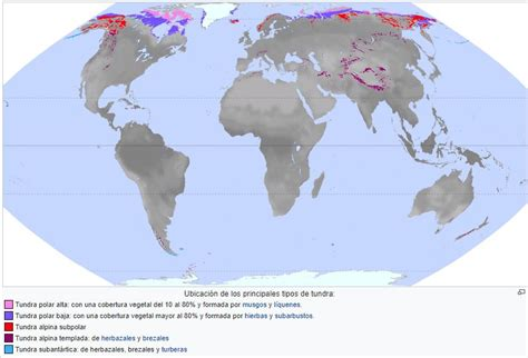 Tundra; Clima, fauna, flora y sus características | OVACEN