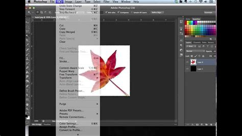 Tutorial Varita Mágica Photoshop CS6 en Mac y Tips para ...