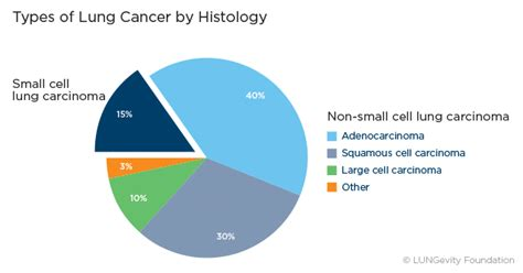 Types of Lung Cancer | LUNGevity Foundation