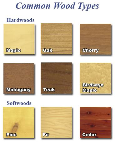 Types of Wood – A Furniture Guide
