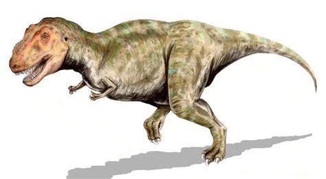TYRANNOSAURUS REX: el supremo rey de los dinosaurios