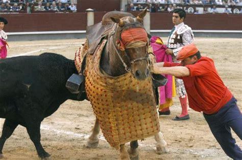 Un monosabio sujeta las riendas del caballo después de que ...