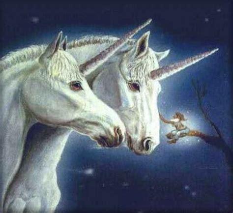 Un viaje al país de Wen: Unicornios
