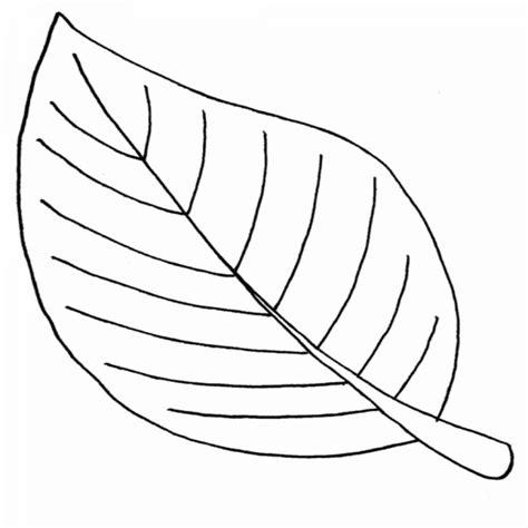 Una Hoja Para Colorear De Diferentes Plantas | Colorear ...