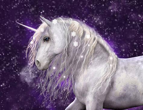 Unicorn Pictures on MarkInternational.info