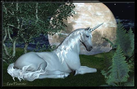 Unicornios Salvajes