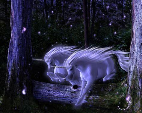 Unicorns images Unicorn Wallpaper HD wallpaper and ...