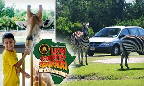 Up To 52% Off Lion Country Safari Tickets - Lion Country ...