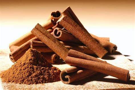 Uso medicinal de la canela – El Heraldo de San Luis Potosi
