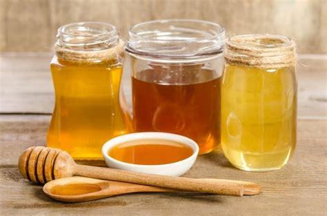 Usos y propiedades de la miel   Notas   La Bioguía