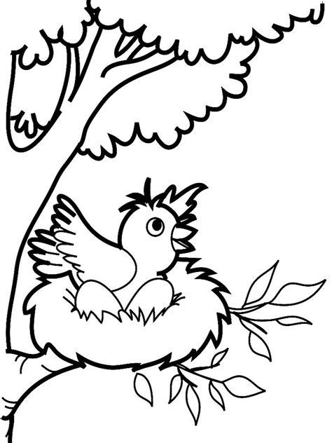 Útiles dibujos para colorear – aves, para chiquitines ...