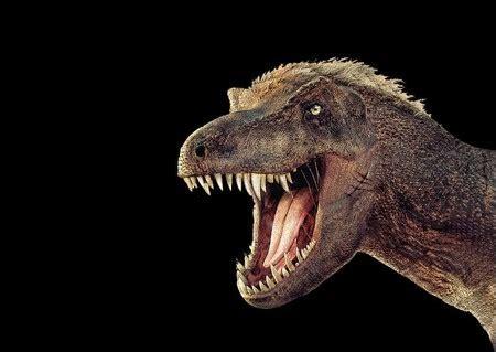 Vacaciones con niños: Navidad entre dinosaurios en el ...