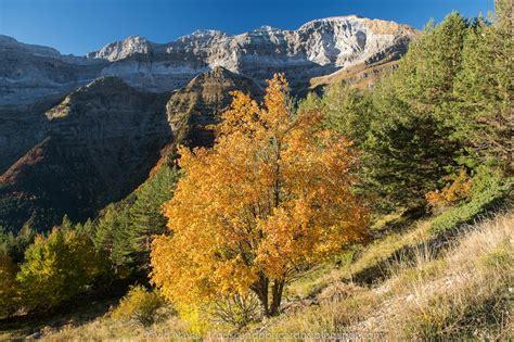 Valle de Pineta, paseo otoñal - Rutas por el Pirineo