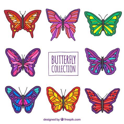 Variedad de mariposas de colores dibujadas a mano ...