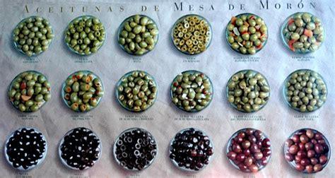 Variedades de aceitunas ecológicas