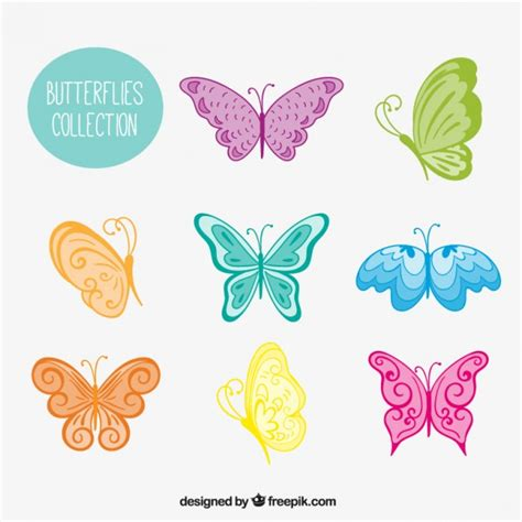 Variety of colored hand drawn butterflies Vector | Free ...