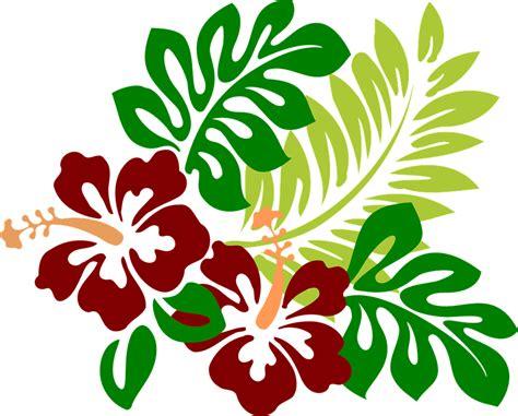 Vector gratis: Hibisco, Flores, Rojo, Tropicales   Imagen ...